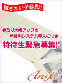 小倉ソープAngeの特待生緊急募集画像
